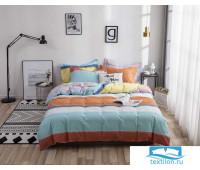 С55(евро) Комплект постельного белья Евро (Прямоугольная ПВХ)